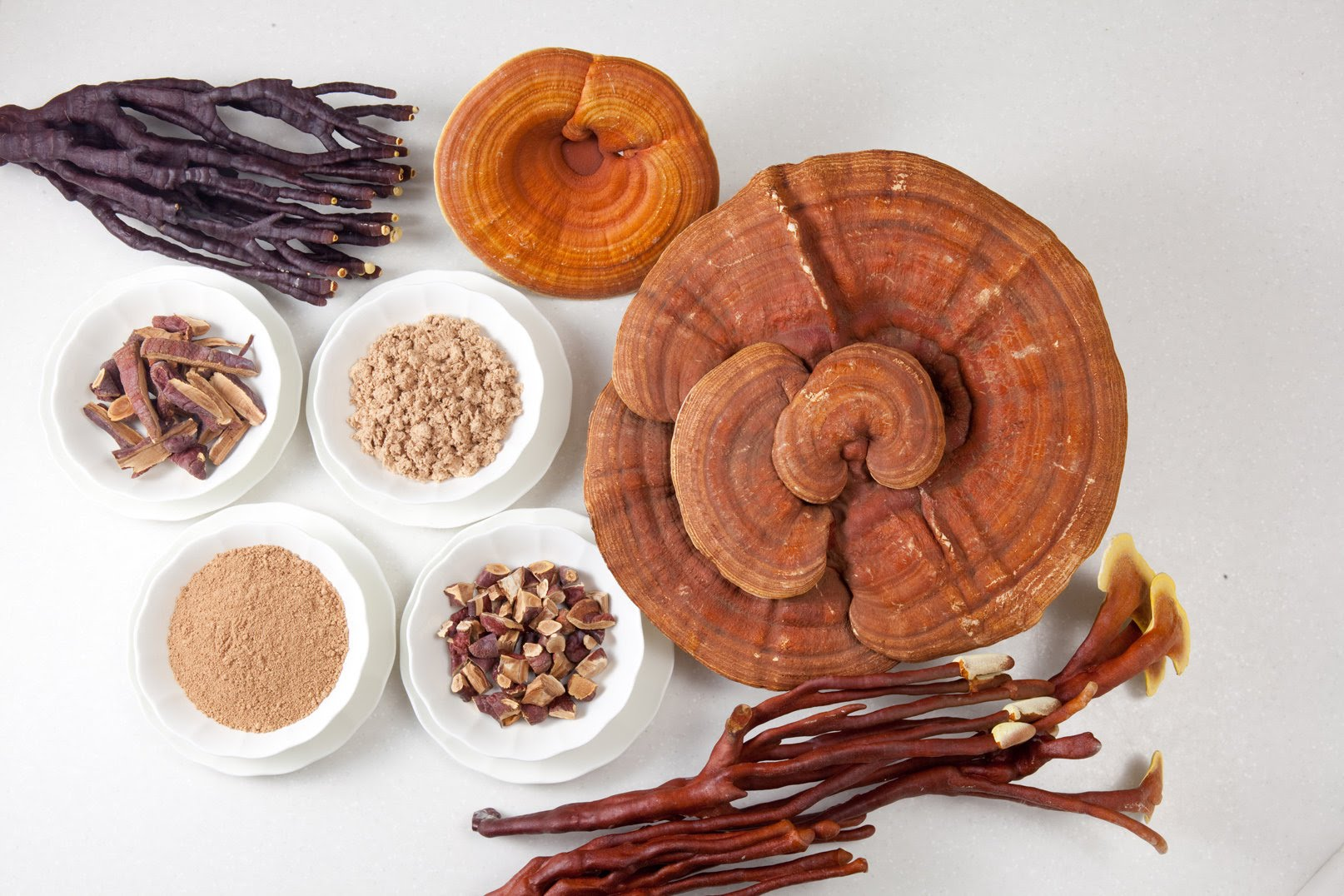 Công dụng của nấm linh chi