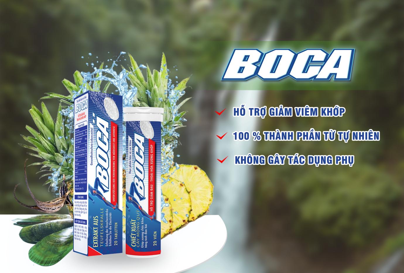 Công nghệ sản xuất viên sủi Boca